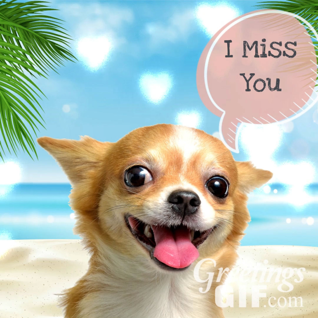 Cute I Miss You Message Card Image